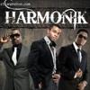 harmonik Incroyable live