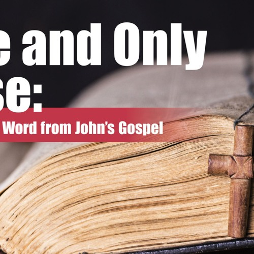 The One and Only up Close - Glimpses of the Eternal Word from Johns Gospel - Pastor Jeff Pugh