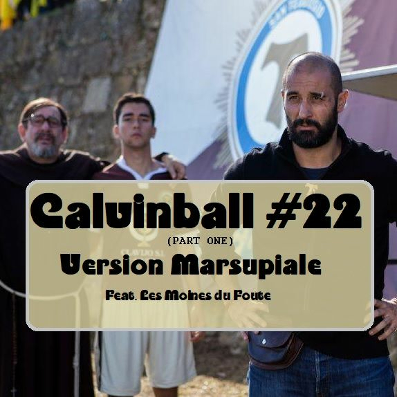 Calvinvall #22