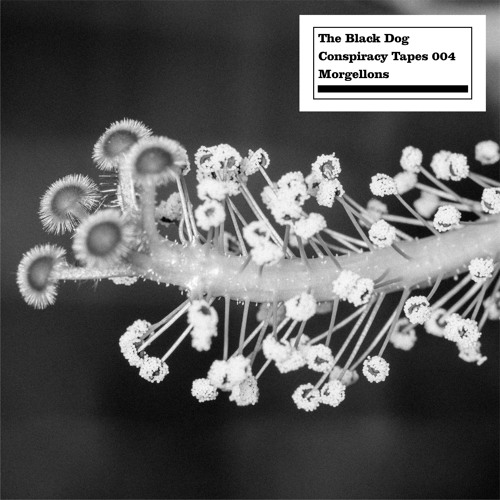 The Black Dog - Conspiracy Tapes 04