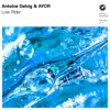 Antoine Delvig & AYOR – Low Rider