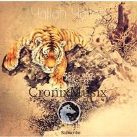 Yallah Yallah [CronixMusix] Artwork