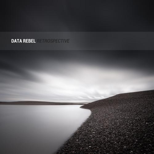 Data Rebel - Retrospective (Sampler)