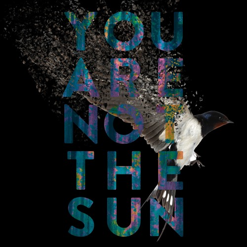 You Are Not The Sun
