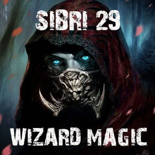Sibri29 & Suzie Morning - Wizard Magic (break Beat Remix)