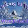 Walking in the wonderland