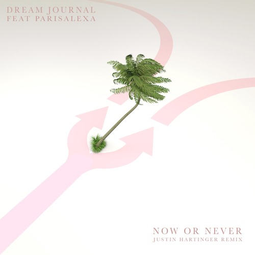 Dream Journal - Now Or Never (feat. ParisAlexa) (Justin Hartinger Remix)