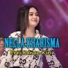 ♫ Nella Kharisma - Prei Kanan Kiri ! 2018 [ Gagaa Arroyo Syasi  & Mr.Alone ] #Req = BIMA N KAUTSAR =