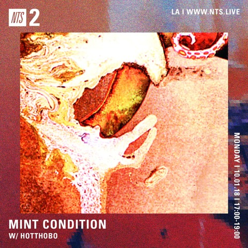 "Mint Condition w/ Hotthobo ""Rawk"" Pt. 2"