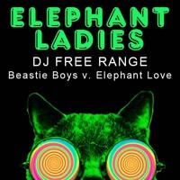 Elephant Ladies (Beastie Boys v Elephant Love)