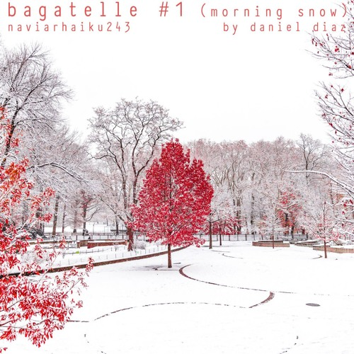 Bagatelle Numero 1: winter snow (naviarhaiku243)