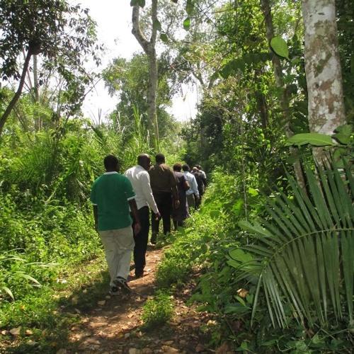 Putting Laudato Si' into Action in Uganda