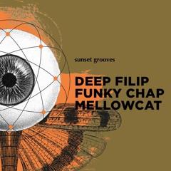 Funky Chap @ Folklor 15.09.2018 - Sunset Grooves w/ Mellowcat & Deep Filip