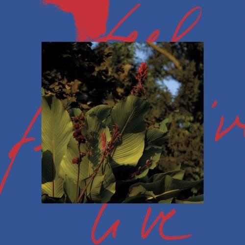 Massimiliano Pagliara – A Winter In Los Angeles (feat. Private Agenda) (Snippet)