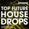 Incognet Top Future House Drops Samples [15 Kits] + FREE DEMO SAMPLES