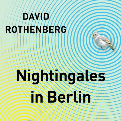Nightingales in Berlin sound examples