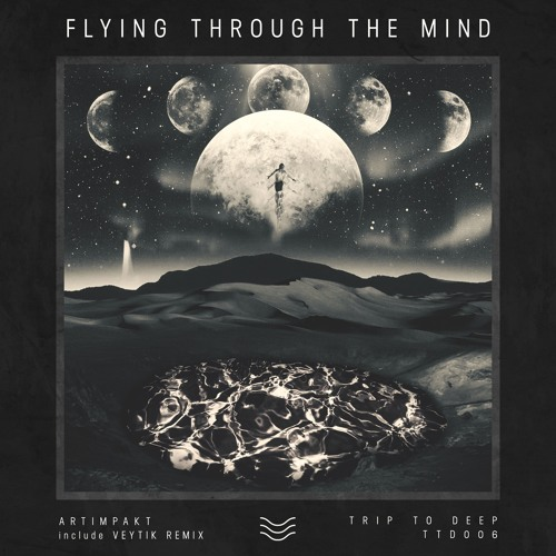 Artimpakt - Flying Through The Soul (Veytik Remix)