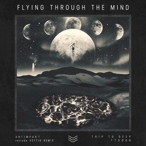 Flying Through The Mind EP - Artimpakt(TTD006)