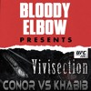 The MMA Vivisection - UFC 229: MAIN CARD