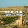 Hips Don't Lie- Shakira(feat. Wyclef Jean)/Domino Dancing- Pet Shop Boys (MASHUP) 110BPM