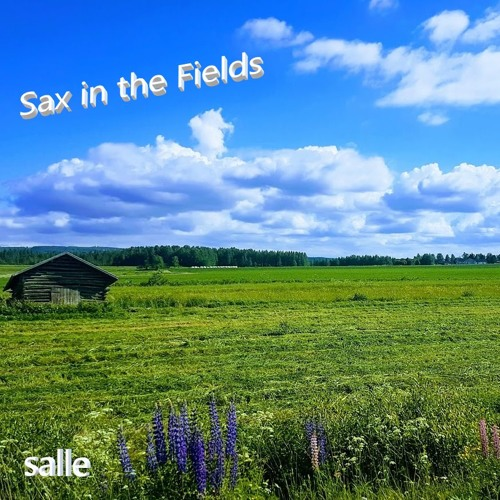 Sax in the Fields