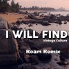 Vintage Culture & Rooftime - I Will Find (Roam Remix)