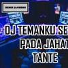 Dj Temanku Semua Pada Jahat Tante 2018 Remix Mantap Jiwa