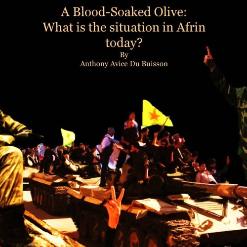 A Blood-Soaked Olive: What is the situation in Afrin today?