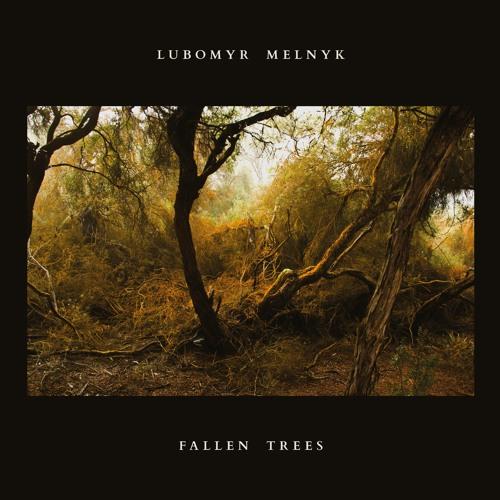 Lubomyr Melnyk - Son of Parasol