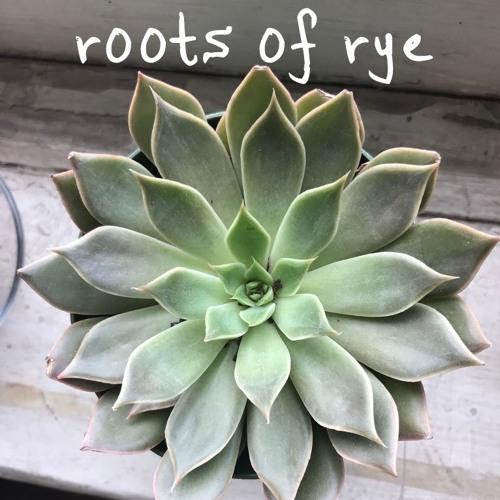 Roots of Rye, Vol. I