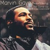 Marvin Gaye - Sexual Healing Ft Az( Dan Palmer`s With Silky Fingaz Im Too Smooth For School Remake )