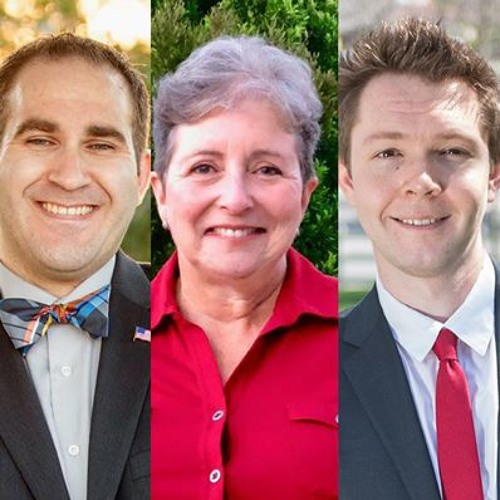 Episode 115 The Progressive Candidates for City Council