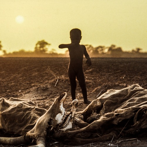 TZH 30 - How can we achieve Zero Hunger?