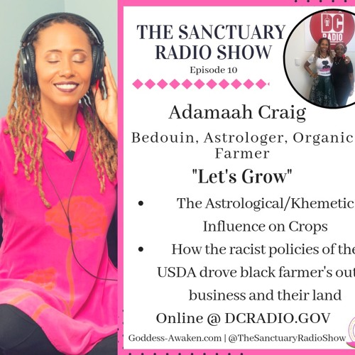 Episode 10: Let's Grow: The Importance of Growing Your Own Food