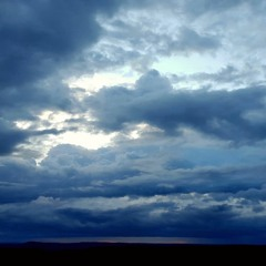 a tease of rain and the magnetosphere, pilliga forest