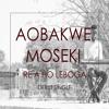 RE A HO LEBOHA - Aobakwe Moseki