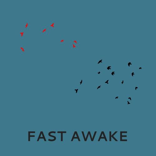 Ben Osborn - Fast Awake