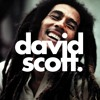 Bob Marley - One Love (David Scott Remix)