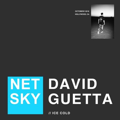 Netsky & David Guetta Ice Cold