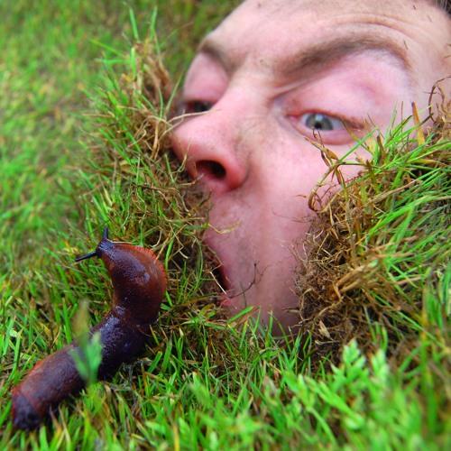 Slug Frontier