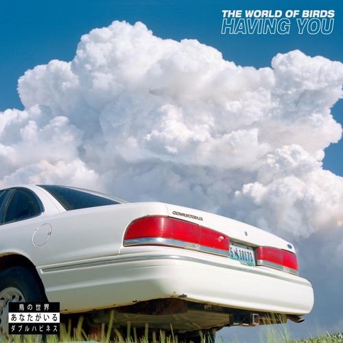 The World Of Birds - Having You