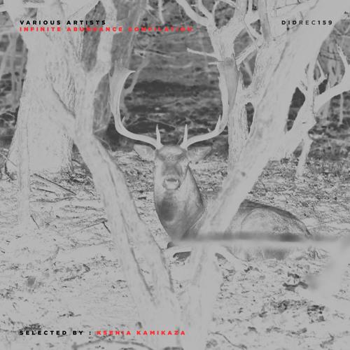 Fredrik Astevall - Bean V2 (Remastered Original Mix) [DIDREC159]