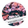 PREMIERE : Riepshoff & Suchopar - It´s A Moog (Original Mix) [Bunte Liebe Records]