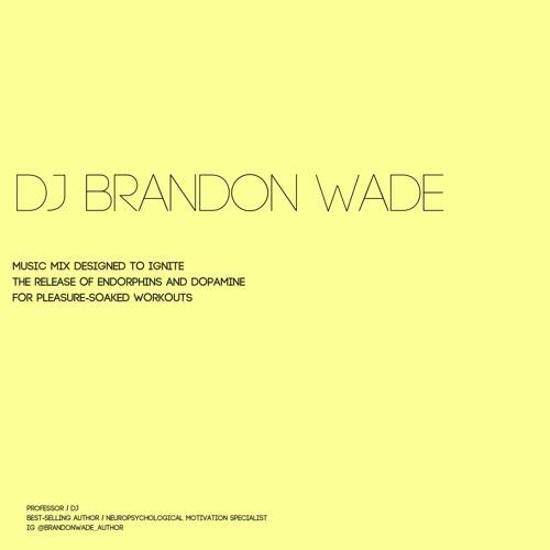 EDM Mix Workout Mix Summer 2018 (clean) by DJ Brandon Wade