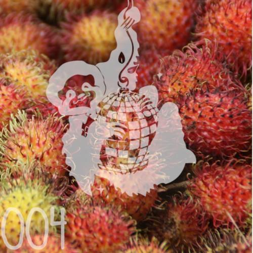 Faultierdisko # 004 - Fruiterama