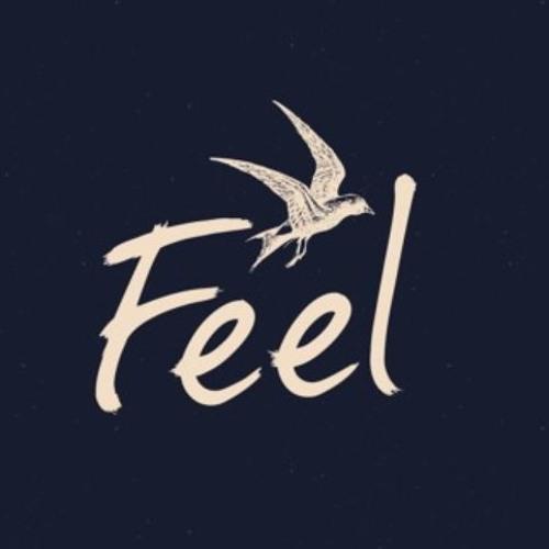 Mellow Monks @ Feel Festival 2018