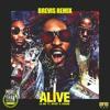 Lil Jon - Alive (BREVIS Remix)