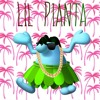 Crunk Hills - Lil Pianta (Lil Jon + Super Mario Sunshine)