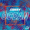 COSSY - I'm The One
