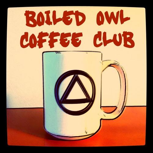 Owl 040 Steve